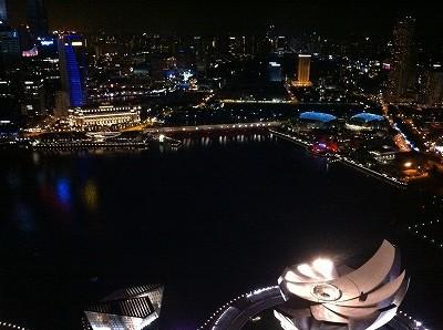 シンガポール マリーナベイサンズ 屋上のスカイパークからの夜景